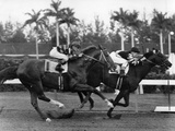 War Admiral Racing to the Finish at Hialeah Park, Miami, 1939 Lámina fotográfica