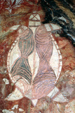 Rock Art Depicting a Pig Nosed Turtle, Probably C.1960S Photographic Print