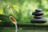 Spa Still Life With Bamboo Fountain And Zen Stone Plastic Sign by Liang Zhang