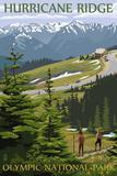 Hurricane Ridge, Olympic National Park, Washington Wall Sign