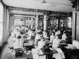 Typewriting Department, National Cash Register, Dayton, Ohio, 1902 Photographic Print by William Henry Jackson