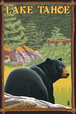 Bear in Forest - Lake Tahoe, California Wall Sign by  Lantern Press