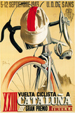 Bicycle Racing Promotion Wall Sign by  Lantern Press