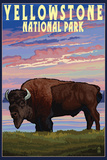 Yellowstone National Park - Bison and Sunset Wall Sign by  Lantern Press