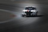 Mustang on the Racing Circuit Signes en plastique rigide par  NaxArt