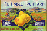 Bancroft, California, Mt. Diablo Fruit Farm Brand Pear Label Plastic Sign by  Lantern Press