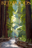 Redwoods State Park - Pathway in Trees Wall Sign by  Lantern Press