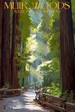Muir Woods National Monument, California - Pathway Wall Sign by  Lantern Press
