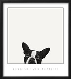 Loyalty Prints by Jon Bertelli