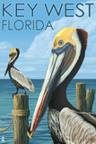 Key West, Florida - Brown Pelican Wall Sign by  Lantern Press
