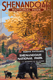Shenandoah National Park, Virginia - Black Bear and Cubs at Entrance Wall Sign by  Lantern Press