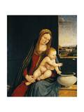 Madonna and Child or Madonna of the Carnations, 1490-1495 Giclee Print by Andrea Solario