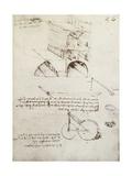 Manuscript B Giclee Print by Leonardo da Vinci