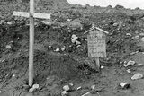 After Allied Troops Had Landed on Kiska Island Photographic Print