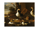 Chinese and Egyptian Geese and Other Birds in a Landscape with Ruins Nearby Giclee Print by Melchior de Hondecoeter
