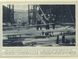 Where an Army of Workers Toil for the Fleet Photographic Print