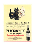 Advert for 'Black and White' Scotch Whisky Giclee Print