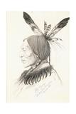 Heu-Topa, Four Horns or Jagoo, the Storyteller, Chief of the Hunkpapa Sioux, 1881 Giclee Print by Rudolf Cronau