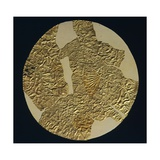 Gold Disk Showing a Figure of a Warrior Toltech Myth Giclee Print