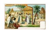 Madagascar Giclee Print