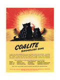 Advert for 'Coalite' Smokeless Coal Giclee Print