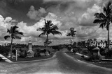 The View West from Segovia Plaza to the Granada Golf Course, Coral Gables, Florida, July 7, 1925 Photographic Print