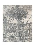 Harvesting of Pepper on Island of Java, Engraving from Universal Cosmology by Andre Thevet Giclee Print