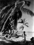 Relaxing under the Palms at Tahiti Beach, Coral Gables, Florida, March 23Rd, 1926 Photographic Print