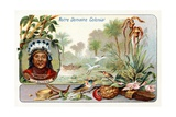 French Guiana, from a Series of Collecting Cards Depicting the Colonial Domain of France, C. 1910 Giclee Print