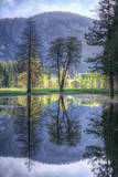 Reflected Trees in Yosemite Valley Photographic Print by Vincent James