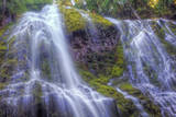 Looking Up at Lower Proxy Falls - Central Oregon Photographic Print by Vincent James