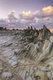 Landscape at Dragon's Teeth, Maui Photographic Print by Vincent James