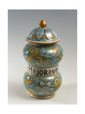 Double Belly Apothecary Jar with Ornate Decorations and 18th-Century Style Flowers Giclee Print