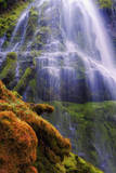Mystical Falls Design, Proxy Falls, Oregon Photographic Print by Vincent James