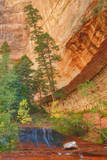 Autumn Inside Zion Canyon, Southern Utah Photographic Print by Vincent James
