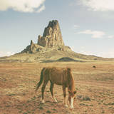 Horses at Mount Agathla, Monument Valley, Arizona Photographic Print by Vincent James