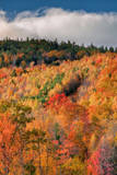 Autumn Hillside, New Hampshire Photographic Print by Vincent James