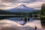 Quiet Time at Trillium Lake, Mount Hood Wilderness, Oregon Photographic Print by Vincent James