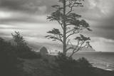 Blustery Morning View From Ecola Point, Oregon Coast Photographic Print by Vincent James