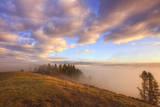 Morning Walk and Hayden Valley Fog, Yellowstone Photographic Print by Vincent James