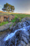 Morning at a Table Mountain Stream, Northern California Photographic Print by Vincent James
