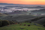 Misty and Foggy Hills Just Before Sunrise, Petaluma, California Photographic Print by Vincent James