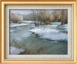 Patterns Of Winter Print by Todd Williams