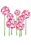 Pink Allium Plakat