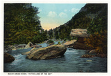 Blue Ridge Mountains, North Carolina - Rocky Broad River Scene Posters