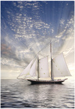 Sailboat Sun And Sky Poster