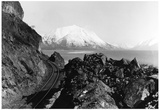 Turnagain Arm from Alaska Railroad Route Photograph - Alaska Poster