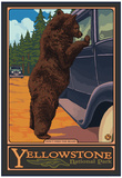 Don't Feed the Bears, Yellowstone National Park, Wyoming Print