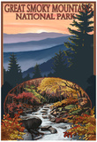 Great Smoky Mountains - Waterfall, c.2009 Posters