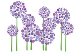 Purple Allium Prints